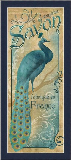 Amazon.com: Exquise Savon by Conrad Knutsen Vintage Peacock 9.5x21.5 Framed Art Print Picture Wall Decor: Home & Kitchen