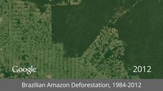 Google's new timelapse project shows 30 years of disappearing rainforest in just seconds