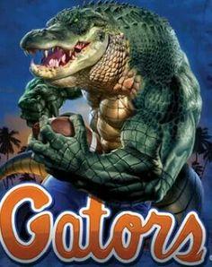 More Gator Logo, Florida Gators Football, College Football Players, Sport Football, Florida Gators Wallpaper, Collage Football, Football Crafts, Crocodiles, Alligators
