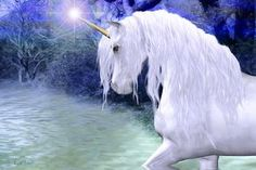 """Star .. a white unicorn"" 