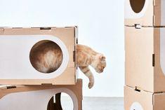 Los gatos y las estructura modular moderna que les puede servir de hogar. Interesantes estructuras modulares para albergar y divertir los gatos.