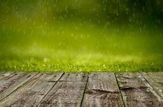 Free Lush green grass with falling drops