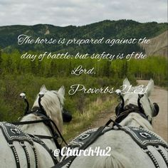 """Proverbs 21-31 The horse is prepared against the day of battle: but safety is of the Lord.  via Instagram http://ift.tt/1UoRMjb  Filed under: Bible Verse Picture Tagged: Bible Bible Verse Bible Verse Picture Pic Picture Proverbs 21-31 """"The horse is prepared against the day of battle: but safety is of the Lord."""" Verse         #KingJamesVersion #KingJamesBible #KJVBible #KJV #Bible #BibleVerse #BibleVerseImage #BibleVersePic #Verse #BibleVersePicture #Picture #Pic #Image #KJVBibleVerse…"""