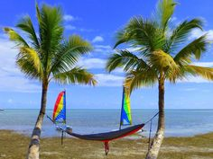 Paradise under the palms in the Florida Keys