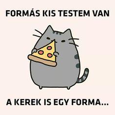 Pusheen Cat, Funny Jokes, Funny Pictures, Lol, My Love, Memes, Quotes, Disney, Fanny Pics