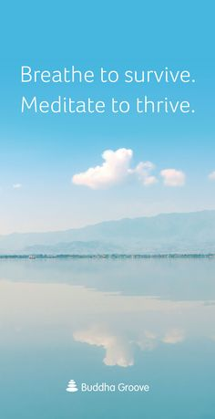 Inspiration for the #Breath - Breathe to survive. #Meditate to thrive.