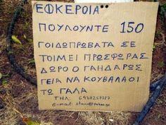 Βρείτε το ...λάθος [ΦΩΤΟ] Greece, Memes, Funny, Messages, Greece Country, Meme, Funny Parenting, Hilarious, Fun
