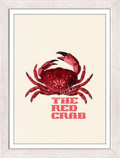 The Red Crab Poster sea life print free by seasideprints