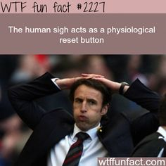 The Human sigh -WTF fun facts