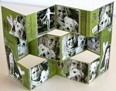 Creative Scrap: Tri-fold Shutter card.  Great idea for displaying your favorite photos.  The folds are reverse to the other Tri-fold Shutter cards I've seen.