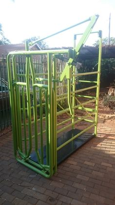 Cattle Neckclamp Weighcrate Combo with Guilotine gate. Can be used as weigh station for cattle and also for treatments.