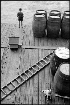 Leonard Freed, The River Rhine, Dusseldorf, West Germany, © Leonard Freed / Magnum Photos Herbert List, Great Photos, Old Photos, Vintage Photos, Magnum Photos, Free Photography, Vintage Photography, Advanced Photography, People Photography