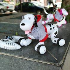JG 2.4G RC Robot Smart Dog RC Intelligent Simulation Mini Dog Sale - Banggood.com