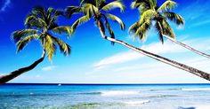 Para fazer o efeito praia no Photoscape, você só vai precisar de alguns minutos. Depois de aplicado, o efeito deixa suas fotografias de praia mais vivas e iluminadas, dando um aspecto de cenário paradisíaco perfeito às suas imagens. Fotografia com ...
