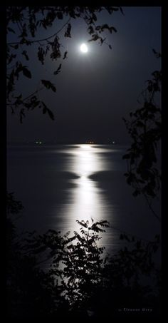 Black and white photography nature moonlight ideas Beautiful Moon, Beautiful World, Beautiful Places, Nature Landscape, Shoot The Moon, Moon Art, Pretty Pictures, Full Moon Pictures, Belle Photo