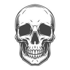 Skull Tattoo Design, Skull Tattoos, Hipster Vintage, Skull Illustration, Skull Artwork, Skeleton Art, Skull Wallpaper, Human Skull, Tattoo Stencils