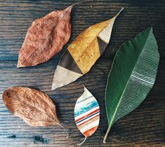 Oldest leaves with newest leaves, and a touch of 🇺🇸 Plant Art, Painted Leaves, Leaf Art, New Leaf, Pattern Design, Photo And Video, Stripes, Instagram Posts, Touch
