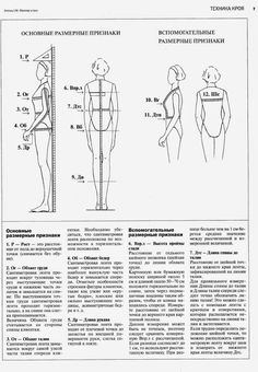 Directional Terms Human Body anatomy Pinterest Human