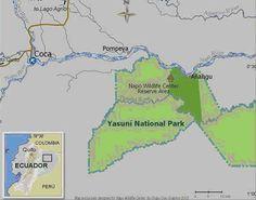 Napo Wildlife Center, Ecuador, Places To Visit, Map, Travel, Pompeii, Voyage, Viajes, Maps