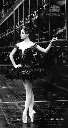 Darcey Bussell as 'Odile' in Swan Lake.