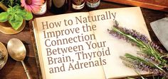 Wondering how the brain is connected to the thyroid? And, the thyroid, adrenal connection to healing your symptoms and overall thyroid health?  Wondering why you can't think or have brain fog and fatigue? Ƹ̵̡Ӝ̵̨̄Ʒ  Learn about the relation these 3 have- brain, thyroid, adrenals ▼  http://thyroidnation.com/improving-thyroid-adrenal-connection/  #Thyroid #Brain #Adrenals