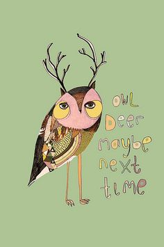 owl deer maybe next time