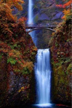 Multnomah Falls , Oregon by daniela.fuchs.144