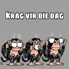 Lekker Dag, Best Quotes, Funny Quotes, Afrikaanse Quotes, Goeie More, Good Morning Wishes, Poems, Lyrics, Humor