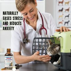 Amazon.com : Simpetico Natural Safe Calming Formula for Pets-Dog, Cat, Small Animal Relaxant Drops, Stress Relief & Anxiety Reducing Solution-Keep Composure with Noise, Travel, Separation, Tension, New Situations : Pet Supplies
