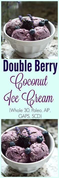 Pure and Simple Nourishment : Paleo Double Berry Coconut Ice Cream (Dairy Free, AIP, SCD, GAPS, Whole 30, No Added Sweetener)