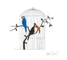 Illustration originale de Carll Cneut - Le pélican | Oeuvres | Galerie Robillard