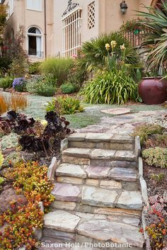 front yard steps - Google Search
