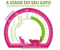Pet Vet, Cat Sitter, Gatos Cats, Cat Logo, Small Cat, All About Cats, Pet Shop, I Love Cats, Animals And Pets