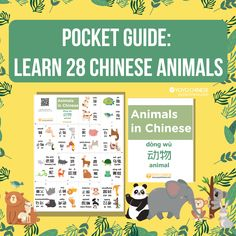 Build your Mandarin vocabulary the fun way! Download our FREE new pocket guide and learn the names of 28 动物 (dòng wù) - animals - in Chinese. 🐢🦒🐨🐒🐾 Click through to download the pdf and watch the demo for cutting and folding it into a little book you can fit in your pocket and study on the go. 📗 There are also audio samples on the blog post, so you can practice your pronunciation saying these 28 animals. Check it out now!