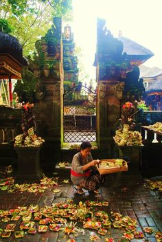 morning offering at Ubud