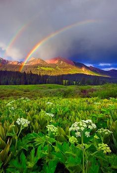 Double Rainbow, The Rocky Mountains, Colorado ~ Blogger Pixz