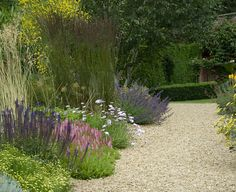 The gardens of this large country house had been laid out some years before leaving a redundant field sandwiched between the immaculately restored stable blocks and walled garden. It was...