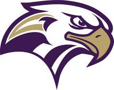 Leader Logo, Hawk Logo, Express Logo, Team Mascots, Sports Team Logos, Bird Logos, Eagle Logo, Animal Logo, Power Rangers