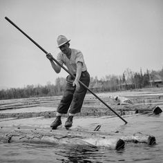 A woodsman wearing spiked shoes opens up an empty boom at the upper end of Mooselookmeguntic Lake (Maine) so it can be filled with more logs from the Kennebago River, 1943.