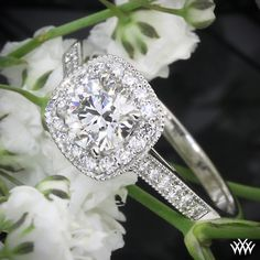Gorgeous square halo engagement ring.