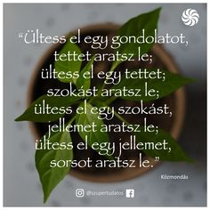...ültess és arass...♡ Drugs, Qoutes, Thankful, Herbs, My Favorite Things, Life, Inspiration, Running, Ideas