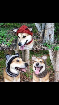 Crochet PDF Pattern, Make your own Dog Costume - Fox, Raccoon, Bear ears to add onto Hound Hoodie, D Knitting Patterns For Dogs, Crochet Patterns, Crochet Ideas, Snood Pattern, Dog Snood, The Perfect Dog, Bear Ears, Dog Halloween Costumes, Christmas Dog