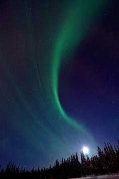 Auroras Boreales.  Fairbanks, Alaska 4 de febrero de 2012.  Foto:  Oivind Toien  (tomada de twitpic.com)