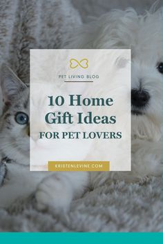These home gift ideas make holiday shopping for the pet lover on your list easy! These stylish gifts will share their love of pets while enhancing the decor of their home. Christmas Gifts For Pets, Christmas Animals, Perfect Christmas Gifts, Home Gifts, Teething Stages, Owl Cat, Unique Toys, Love Pet, Gifts For Pet Lovers