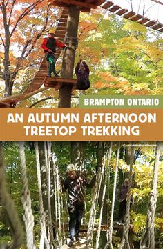 An Autumn Afternoon Treetop Trekking in Brampton Ontario Ontario Travel, Toronto Travel, Travel With Kids, Family Travel, Places To Travel, Travel Destinations, Canadian Travel, Canadian Rockies, Travel Photos