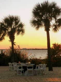 The Charleston Area Wedding Guide : Charleston Harbor Resort