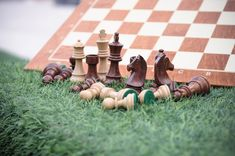 Chess pieces and the board.