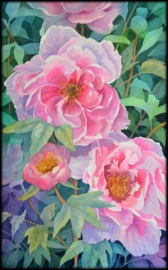 Peonies 2 by Shelter85 on deviantART