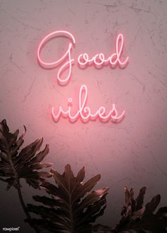 Neon red good vibes on a wall premium image by nam Lexi Fletcher Collage Mural, Bedroom Wall Collage, Photo Wall Collage, Picture Wall, Picture Quotes, Aesthetic Pastel Wallpaper, Pink Wallpaper, Aesthetic Wallpapers, Good Vibes Wallpaper