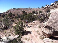 Western Rim Trail, Rabbit Valley, just west of Loma/Fruita, Colorado